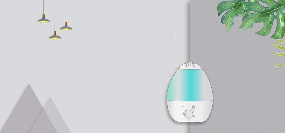 Best Humidifier for Colds and Flu Reviews 2020